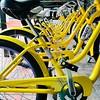Resort Bikes