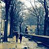 SPS-T1-Nancy Brown-Warm Winter Soltice Central Park