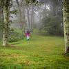 SPS-T1-2nd-Shari Dutton-Forest Stroll