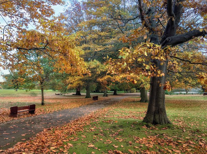 Grovelands Park_Ralph Graham