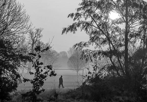 misty morning in Arnos Park