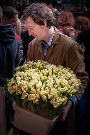 Tulips_Ian Rawlinson