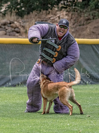 24th Annual K9 Officer Survival Seminar (Prescott, AZ.)
