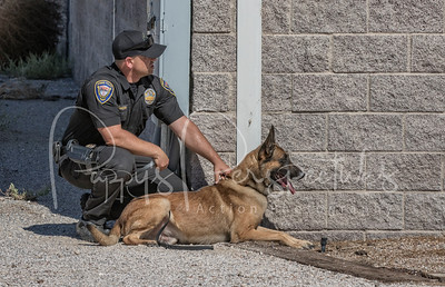 25th Annual Las Vegas Police K9 Trials