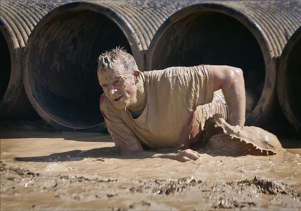 Steve Harrison - Mud, mud, glorious mud 3