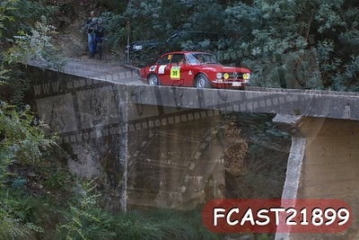FCAST21899