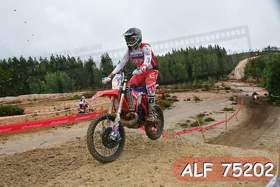 ALF 75202