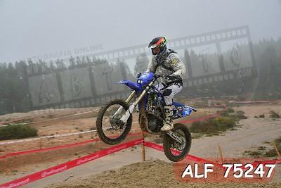 ALF 75247