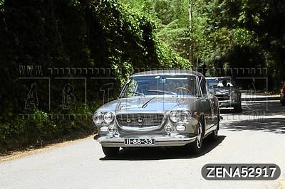 ZENA52917