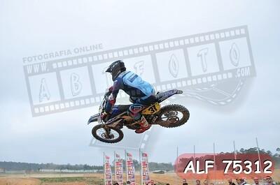ALF 75312