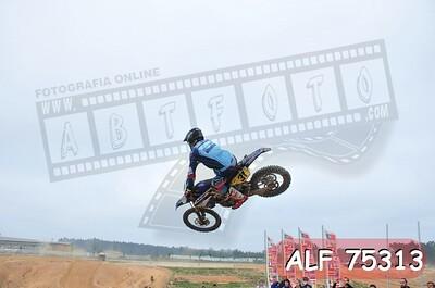 ALF 75313