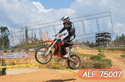 ALF 75007