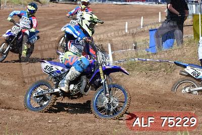 ALF 75229