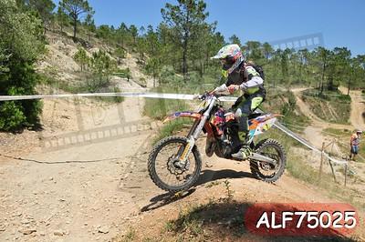 ALF75025