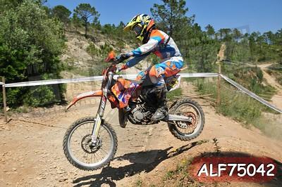 ALF75042