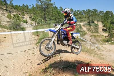 ALF75035