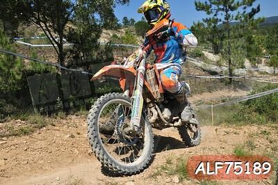 ALF75189