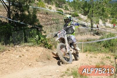 ALF75213