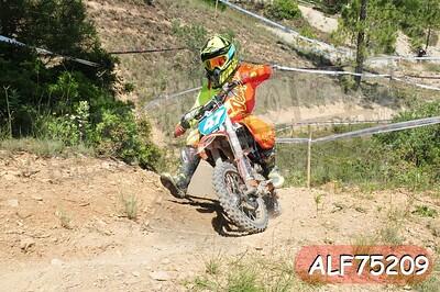 ALF75209