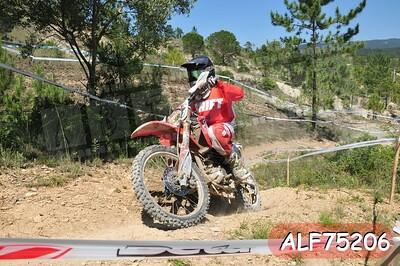 ALF75206