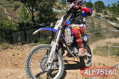 ALF75180