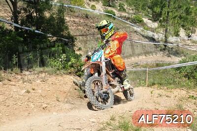 ALF75210