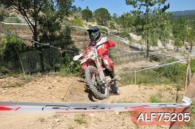 ALF75205