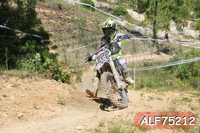 ALF75212