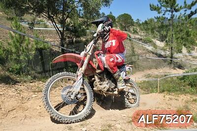 ALF75207