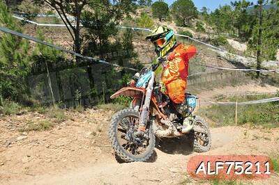 ALF75211