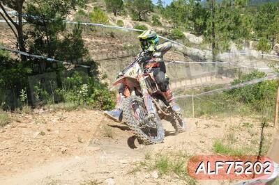 ALF75202