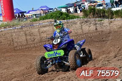 ALF 75579