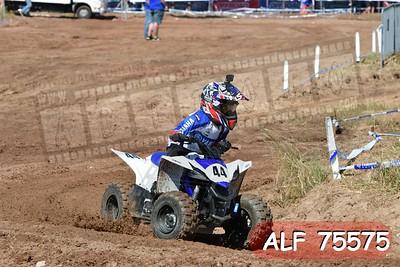 ALF 75575