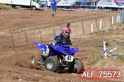 ALF 75573