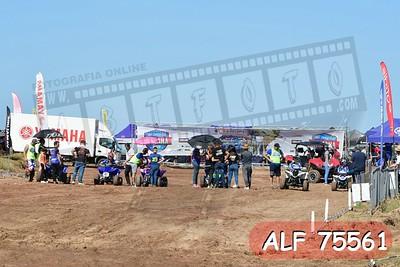 ALF 75561