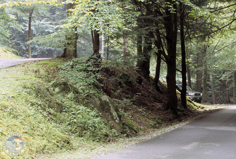 Gomphus floccosus habitat