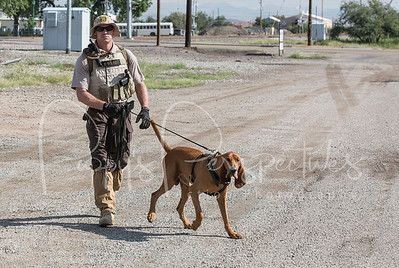 AZ. Dept. of Corrections Hound Camp 2014
