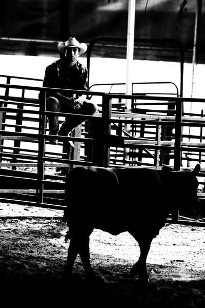 AL Stock Horse Clinic Sept.18,2010