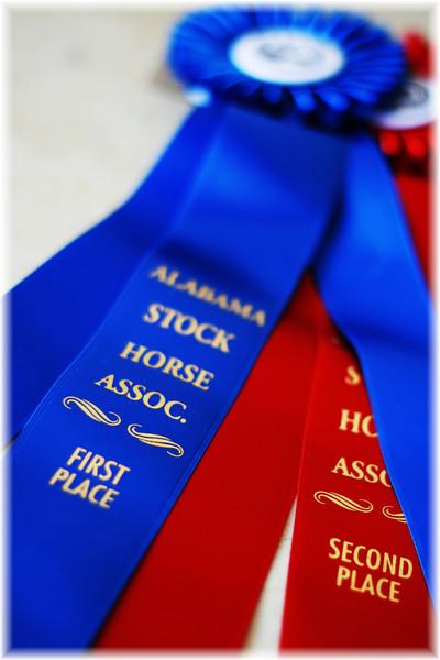 Alabama Stock Horse Show Sept.19,2010