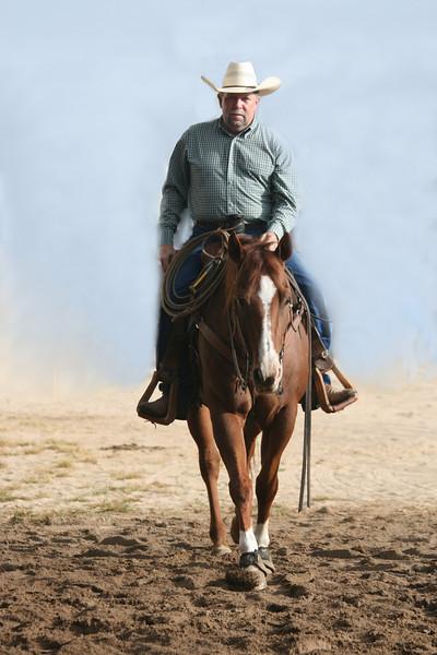 S.Alabama Stock Horse SHOW