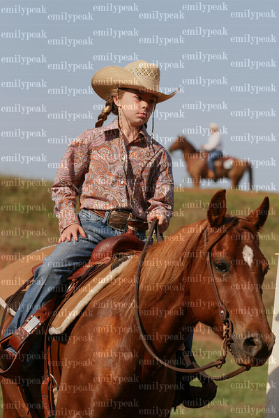 Southeast Alabama Stock Horse Show