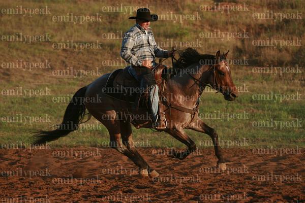 Southeastern Alabama Stock Horse Clinic