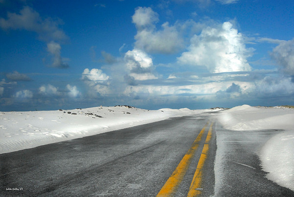 Title: Road to Nowhere<br /> Category: Large Color<br /> Score:  1st Place<br /> by Loleta Holley 2007 Annual Competition