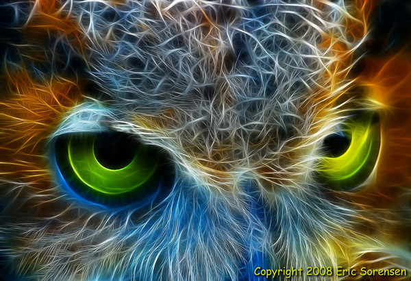 Owl Eyes<br /> By Eric Sorensen<br /> Non-Traditional<br /> 2nd Place 2008 Annual Competition