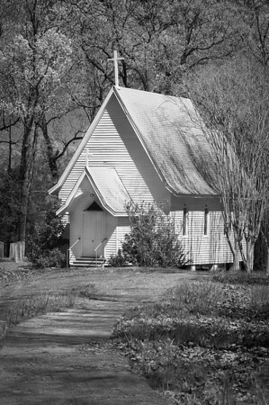 First Presbyterian Church in the Woods #1<br /> Wilfred Smith<br /> Large Black & White<br /> 3rd Place 2008 Annual Competition