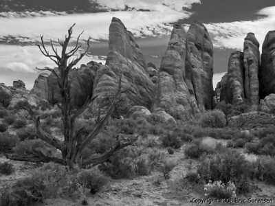 """Arches National Park"" By Eric Sorensen 1st Honorable Mention Monochrome"