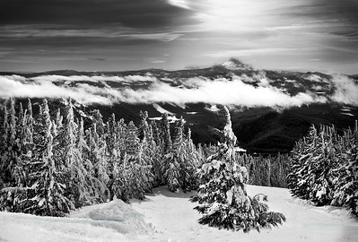 Timberline Ski Trail Monochrome 1st Place 2009 Felix Laminen Award for best scenic monochrome-2009 by Loleta Holley