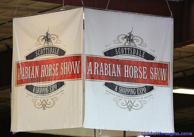 2014 Scottsdale, Arizona Arabian Horse Show