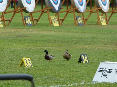 El Dorado Park, State Championship, 5-24-2014