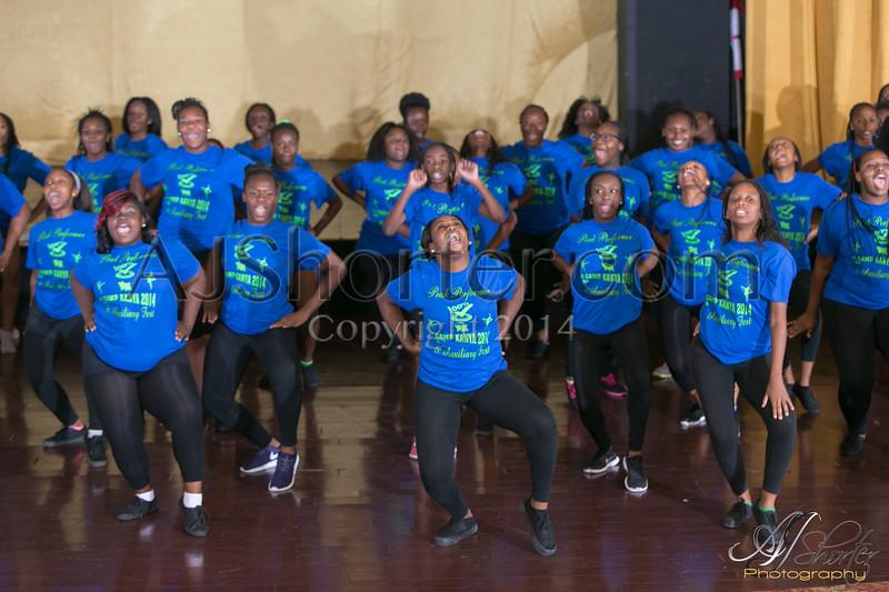 2014 Auxiliary Fest - Peak Performers